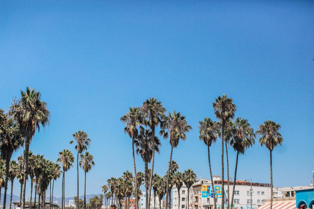 cupofcouple-viaje_los_angeles-venice_beach-0009