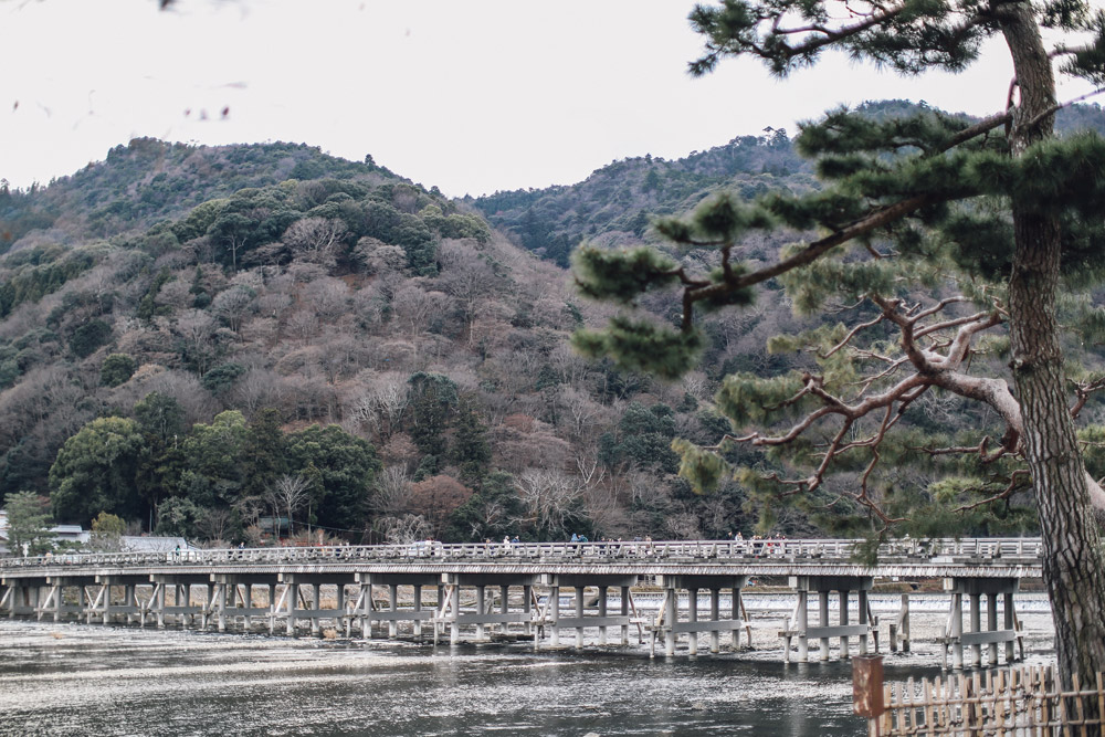 kyoto_bosque_de_bambu-cupofcouple-0004