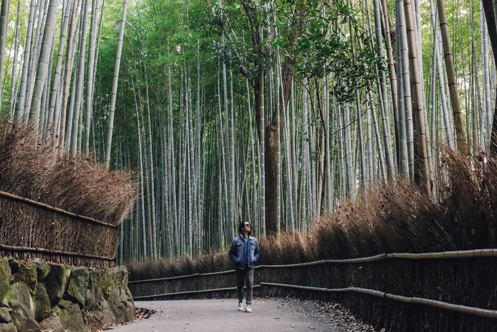 kyoto_bosque_de_bambu-cupofcouple-0016