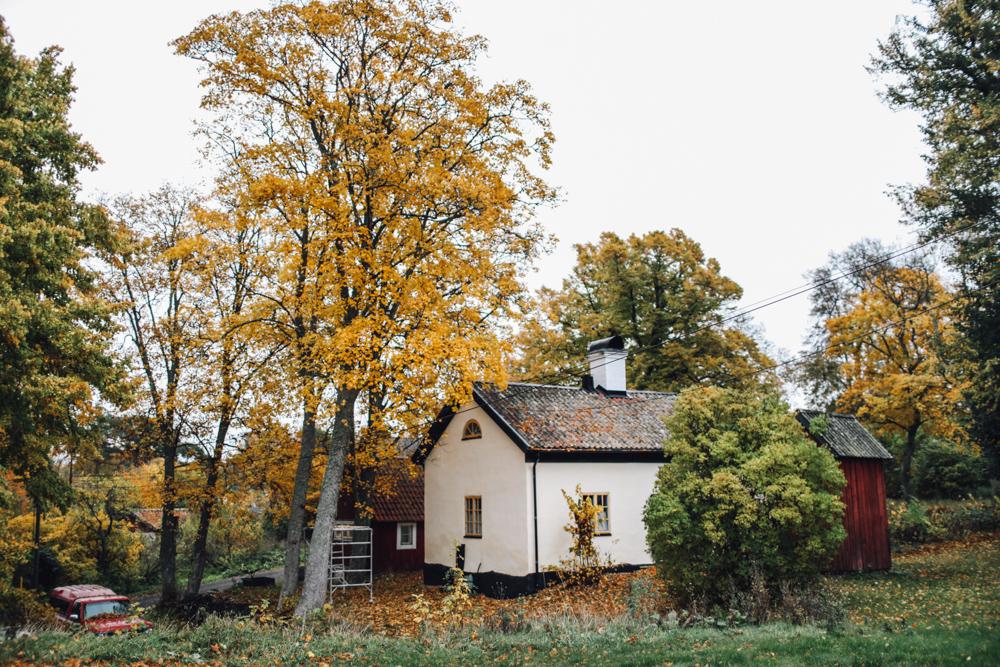 cupofcouple-uto_sweden-0002