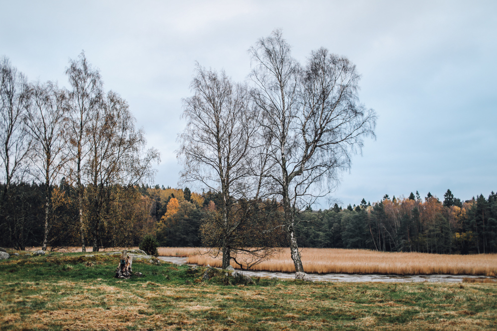 cupofcouple-uto_sweden-0005