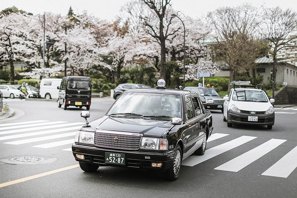 cupofcouple-hanami_tokyo_japan-0012